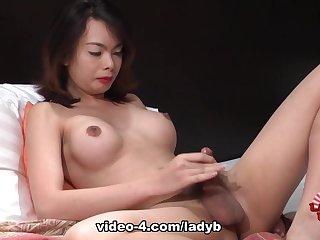 Busty Dos Strokes - Ladyboy-Ladyboy